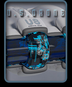 United States Domestic Drone