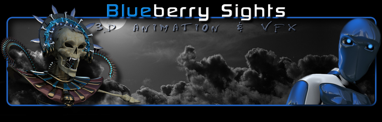 Blueberry Sights 3D Animation & Vfx